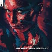 Pasilda (Remixes, Pt. 2) von Afro Medusa
