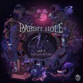 Rabbit Hole Vol. 1 de Various Artists