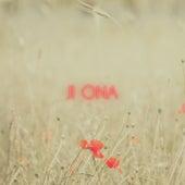 Poppies by Ji Ona