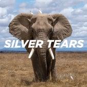 Silver Tears by Pale Blue