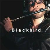 Blackbird (Cover) von Jhonatan Pereira Flautista