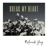 Break My Heart by Amanda Yang