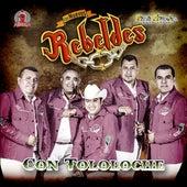 Con Tololoche von Los Nuevos Rebeldes