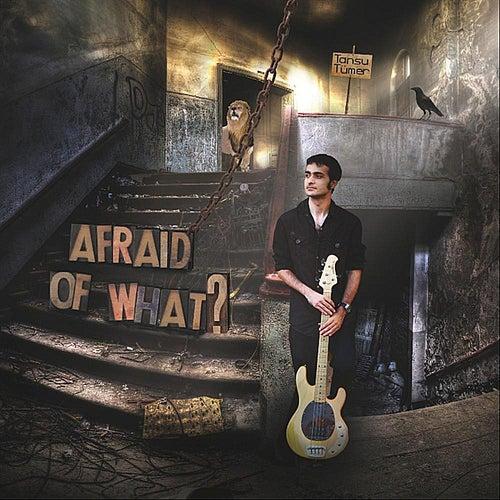 Afraid of What? by Tansu Tumer