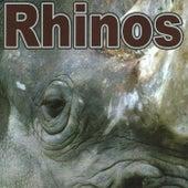 Rhinos by The Rhinos