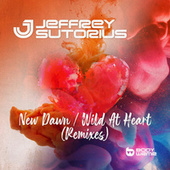 New Dawn / Wild At Heart (Remixes) by Dash Berlin