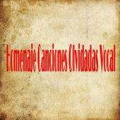 Homenaje Canciones Olvidadas Vocal de Various Artists