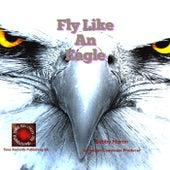 Fly Like an Eagle by Bobby Martin