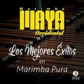 Los Mejores Éxitos de Marimba Maya Occidental