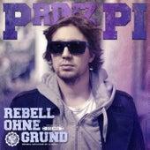 Rebell ohne Grund von Prinz Pi