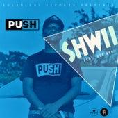 Shwii (feat. Zee Bee) von Push
