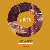 Njuzu (Remastered) by Stella Chiweshe