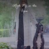 Look Me in the Eyes de Wilson Pickett, T-Bone Walker, Lightnin' Hopkins, Son House, Gladys Knight