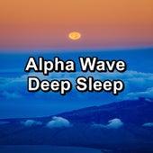 Alpha Wave Deep Sleep by Sounds for Life
