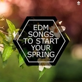 EDM Songs To Start Your Spring by Various Artists