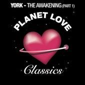 The Awakening (Part 1) by York