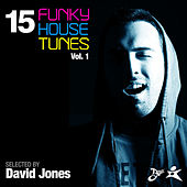 15 Funky House Tunes, Vol. 1 - Selected by David Jones von Various Artists