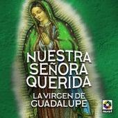 Nuestra Señora Querida La Virgen De Guadalupe by Various Artists