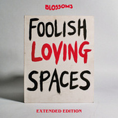 Foolish Loving Spaces (Extended Edition) by Blossoms