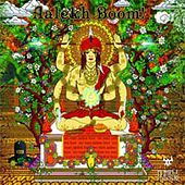 Aalekh Boom von Various Artists