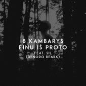 Einu Iš Proto (Dynoro Remix) by 8 Kambarys