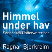 Himmel under hav by Ragnar Bjerkreim