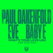 What's Your Love Like (Hip Hop Mix) by Paul Oakenfold
