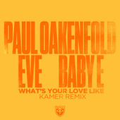 What's Your Love Like (Kamer Remix) by Paul Oakenfold