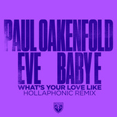 What's Your Love Like (Hollaphonic Remixes) by Paul Oakenfold
