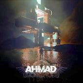 Destroyer / The One Eyed von Ahmad
