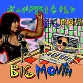 Big Mouth by Santigold