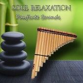 Soul Relaxation, Panflute Sounds de Spritual Flutes