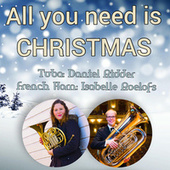All You Need Is Christmas de Isabelle Roelofs