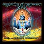 Mysteries of Psytrance, Vol. 8 (Album DJ Mix Version) by Mutana Kataro Ovnimoon