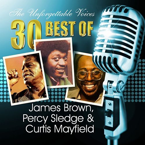The Unforgettable Voices: 30 Best of James Brown, Percy Sledge & Curtis Mayfield by Various Artists