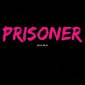 Prisoner de Jayla Miley