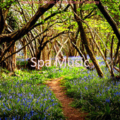 Background Music for Meditation Therapy by Spa Music (1)