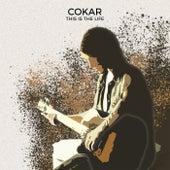 This Is the Life de Cokar
