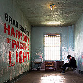 Harmony of Passing Light von Brad Brooks