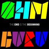The End Is The Beginning de Ohm Guru