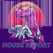 House Report de Various Artists