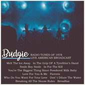 Radio Tunes of 1978 - Live American Broadcast (Live) by Budgie