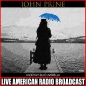 Under My Blue Umbrella (Live) von John Prine