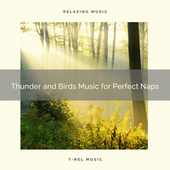 Thunder and Birds Music for Perfect Naps de Rain Sounds Collection