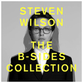THE B-SIDES COLLECTION by Steven Wilson