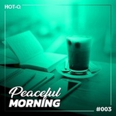 Peaceful Morning 003 by Various Artists