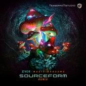 Magic Shrooms (Sourceform Remix) de Zyce