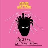 Musik (ChrisKillThatBeat Remix) by David Walters