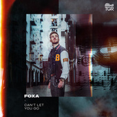 Can't Let You Go by Foxa