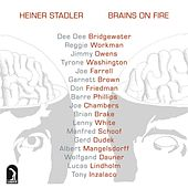 Stadler: Brains on Fire by Various Artists